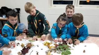 Learning about Hibernation 20th Worcester Beavers