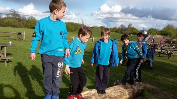 Tree Climbing 2 20th Worcester Beavers