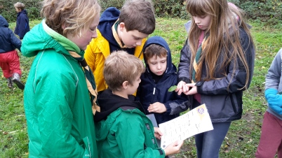 Scouts teaching the Beavers about trees
